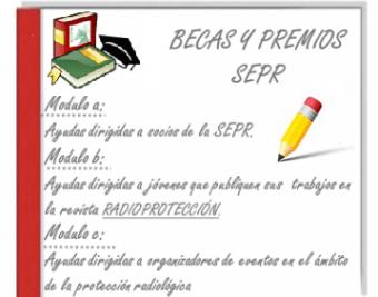 Ayudas, becas y premios por parte de la SEPR - 2020.