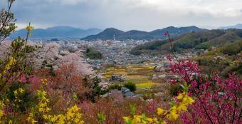 ¿Cómo está Fukushima ocho años después del accidente nuclear?